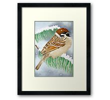 A Sparrow in the winter snow Framed Print
