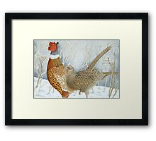 Pheasants in the snow Framed Print