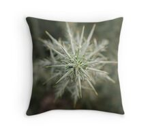 Nature's Death Star Throw Pillow