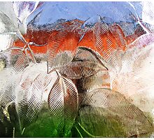 Transparency Photographic Print