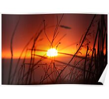 Red mid winter sunset Poster