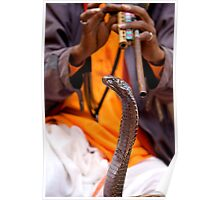 Snake Charmer Poster