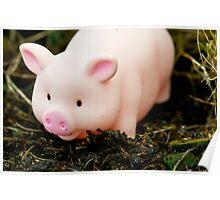 Piggies Delight Poster