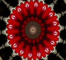 webbing by Heike Nagel
