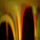 Worm Holes by Elizabeth Bravo