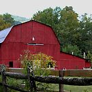 Red Barn near North Fork River by Linda Costello Hinchey