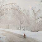 On the Road Again by Gisele Bedard