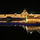 Celebration of Guru Nanak's Birthday -IV Panorama by RajeevKashyap