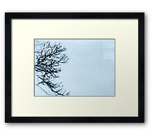 The side of a tree Framed Print