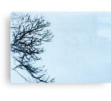 The side of a tree Canvas Print
