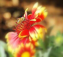 Bee Nesting: by Cherubtree