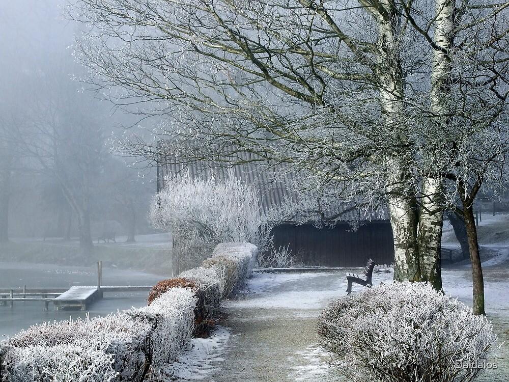 Foggy Morning by Daidalos