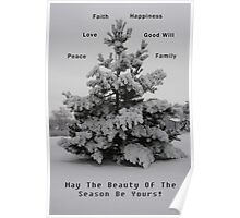 The Beauty of The Season Poster