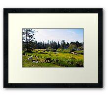 Cannon Beach Horses Framed Print