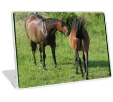 """""""Horses with Attitude no. 4, 'Don't Touch the Coat'""""... prints and products Laptop Skin"""