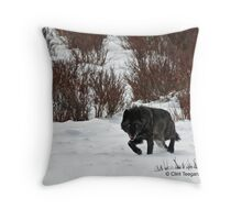 Casanova, wolf #302 Throw Pillow