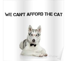 Sorry, We Can't Afford the Cat Poster