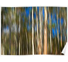 Among The Gum Trees Poster