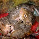 Squirrel Snuggles by kayzsqrlz