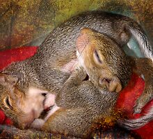 Squirrel Snuggles by Kay Kempton Raade