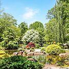 Japanese Garden by dbvirago