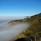 Fog Over The Big Sur Coast by Ellen Cotton