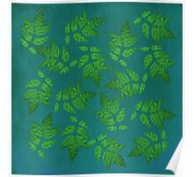 White Ash Leaves in Green Poster