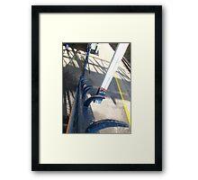 Urban claws Framed Print