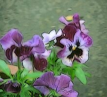 Purple Pansy Pot by DeneWest