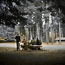 A Day in the Park - Hollybank, Tasmania by Liam Byrne