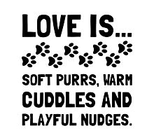 Love Is Soft Purrs Photographic Print