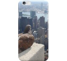 Empire State Pigeon iPhone Case/Skin