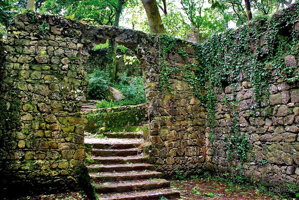 Staircase in the green by Adri  Padmos