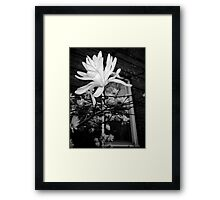 Window Box Angel Framed Print