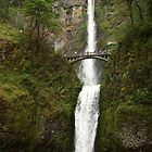 Multnomah Falls by Ronda Sliter