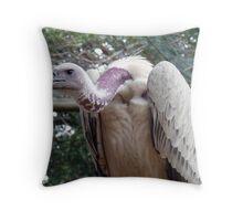 scavenger - Vulture, South Africa Throw Pillow