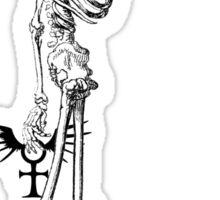 Anubis Sticker