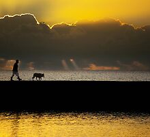 Walk With a Friend by Ben Ryan