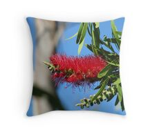 Callistemon bottlebrush Throw Pillow