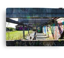 Day out at the abandoned asylum  Canvas Print