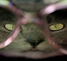 Cat with glasses by TeAnne
