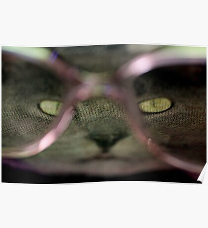 Cat with glasses Poster