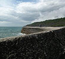 Walk Along The Harbour Wall, Dorset UK by lynn carter
