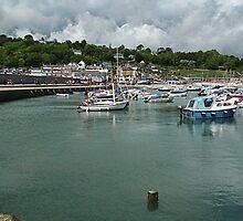 Lyme Harbour.....Lyme Regis,Dorset UK by lynn carter