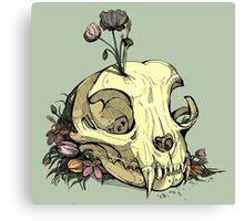 Little Skull Colour Canvas Print