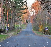 Another country road in Selma by mltrue