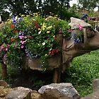 A Pig Full of Flowers - St Werburghs City Farm - No.2 by David Sandilands