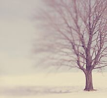 Lone tree in the winter by Erika Lafrennie