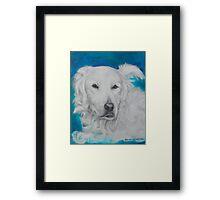 Dog - Guus a true angel Framed Print
