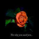 My Love... by GerryMac
